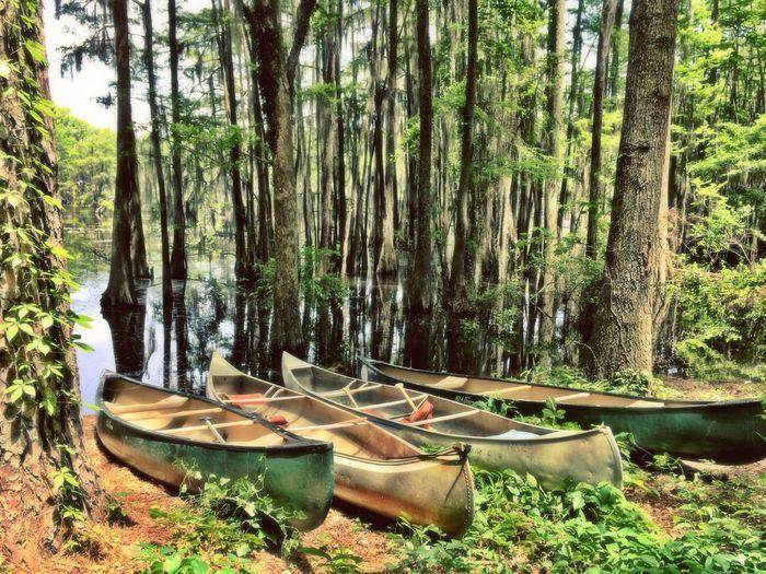 The Explorer - 2014 EyeEm Awards Outdoors Exploring Canoe