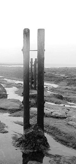 Sea Water No People Outdoors Calmness St Marys Lighthouse Dull Sky EyeEm Best Shots - Nature Eyemphotography Old Wooden Structure Rock Pools Rocks And Water Seaweed Misty Morning Black And White Photography