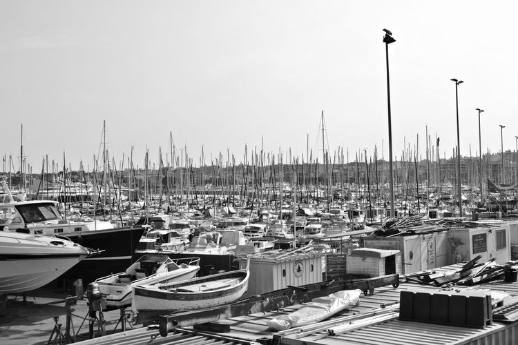 Sailboats moored at harbor against clear sky
