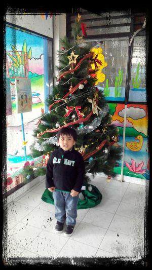 school x-mas tree