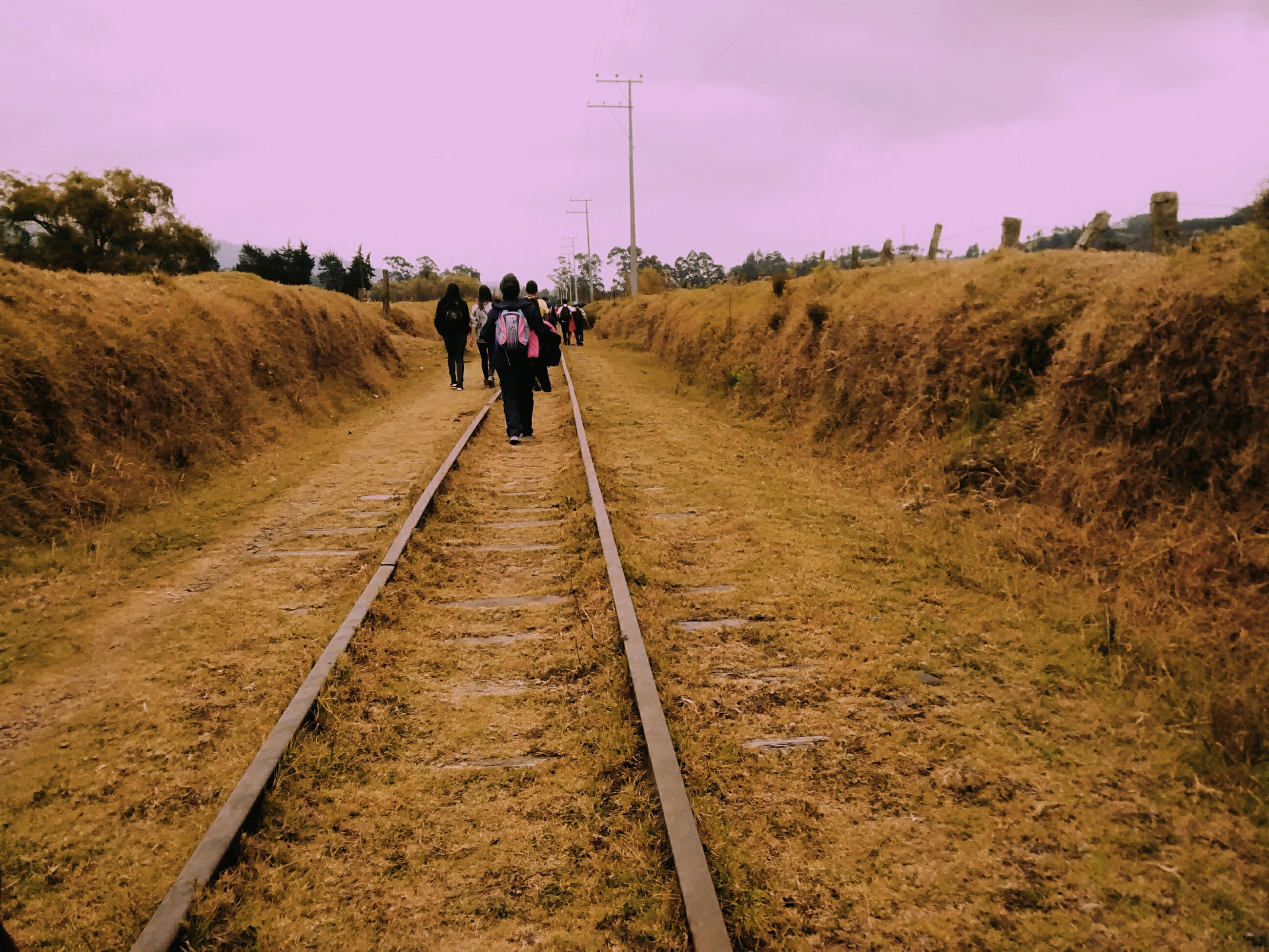 the way forward, walking, men, rear view, full length, sky, lifestyles, leisure activity, diminishing perspective, landscape, person, vanishing point, transportation, dirt road, nature, field, grass, tree