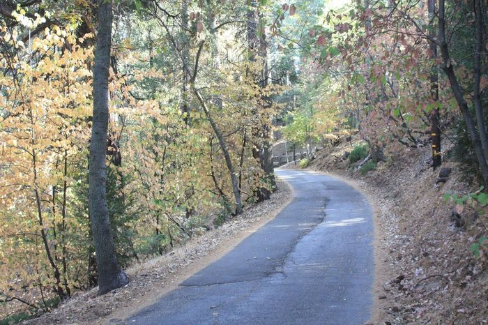 Fall Roads To Nowhere Seclusion