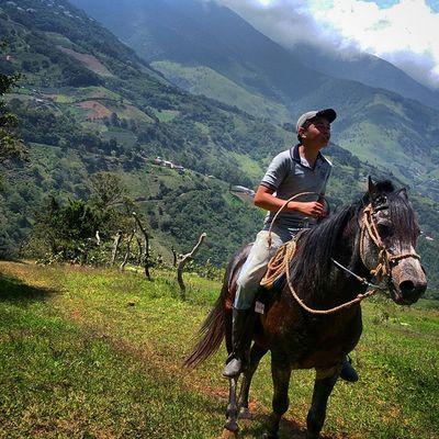 Aún en nuestros paramos tachirenses se viaja a caballo. Joven recorre parte del páramo del Zumbador en su equino en la vía a Cada del Padre en Tachira  Venezuela Gotravelfree Gf_venezuela Gf_colombia IG_GRANCARACAS IgersVenezuela Insta_ve Instapro_ve IG_Venezuela InstaLoveVenezuela Instafoto_ve Instaland_ve Destinomaschevere Tequierovenezuela Thisisvenezuela Icu_venezuela Ig_lara Igworldclub Ig_tachira IG_Panama Ig_merida Instavenezuela Elnacionalweb Venezuelapaisajes instanature gf_daily venezuelacaptures everydaylatinamerica everydayeverywhere