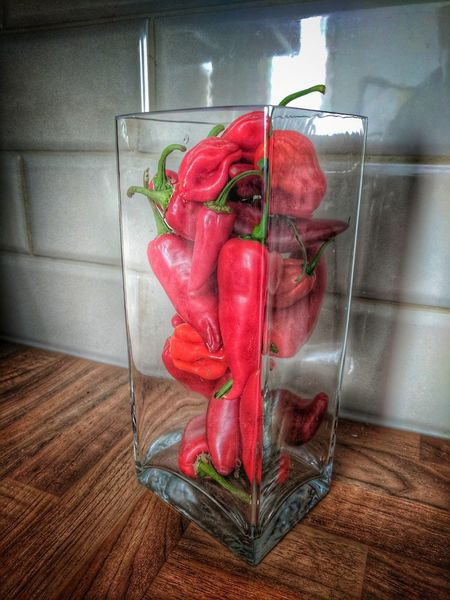 Red Indoors  No People Healthy Eating Freshness Food Day Close-up Chillies Vase Vase Art Scotch Bonnet Hot Glass Photography Art EyeEm Best Shots
