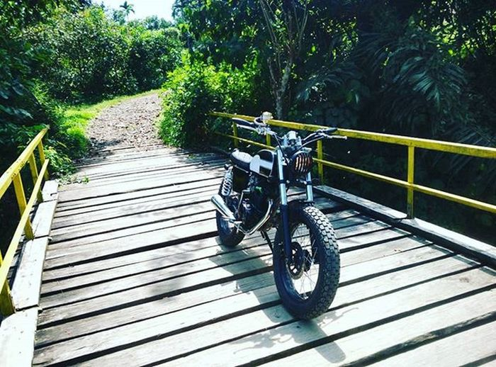 Just ride it 👌 Scrambler Streettracker  Vscocam Jungle Nature