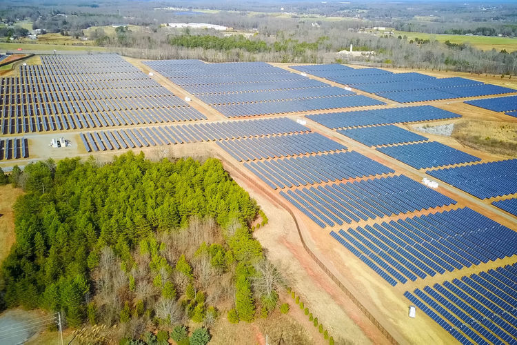 solar panels Environment Plant Landscape Nature Rural Scene Agriculture Tree Land Day High Angle View Green Color Field Aerial View Scenics - Nature Beauty In Nature No People Fuel And Power Generation In A Row Outdoors Growth Solar Panels