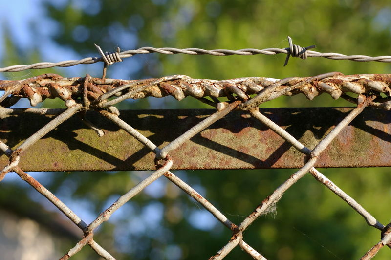 Low Angle View Rust Barbed Wire Barrier Boundary Chainlink Fence Close-up Day Detail Detailphotography Don't Cross Dried Fence Focus On Foreground Metal No People Outdoors Protection Rusty Rusty Metal Safety Security Sharp Sunlight Wire