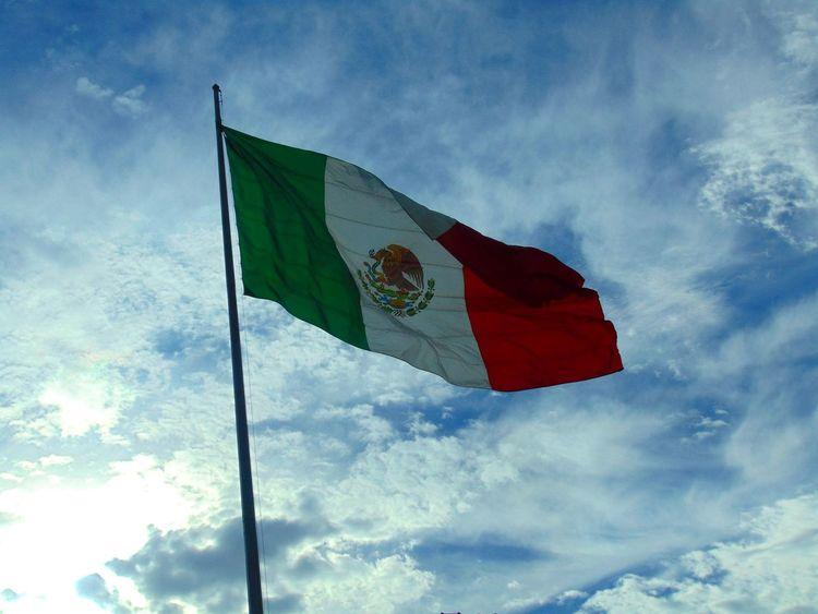 Eres Mexicano? ¿Conoces México? / Do u know Mexico ? Mexico City Mexicolors Mexico_maravilloso EyeEm Best Shots Eye4photography  Market EyeEm Gallery