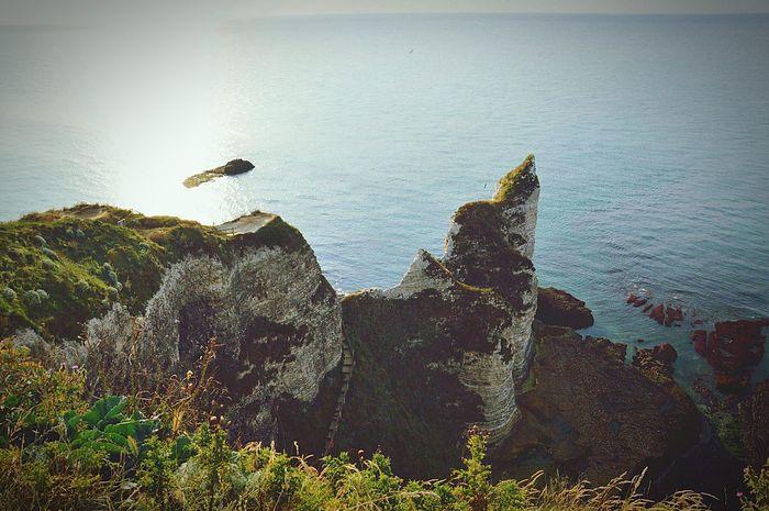 étretat Normandie Balades Falaises Mer Ciel Bleu Sea Blue Sky Freedom