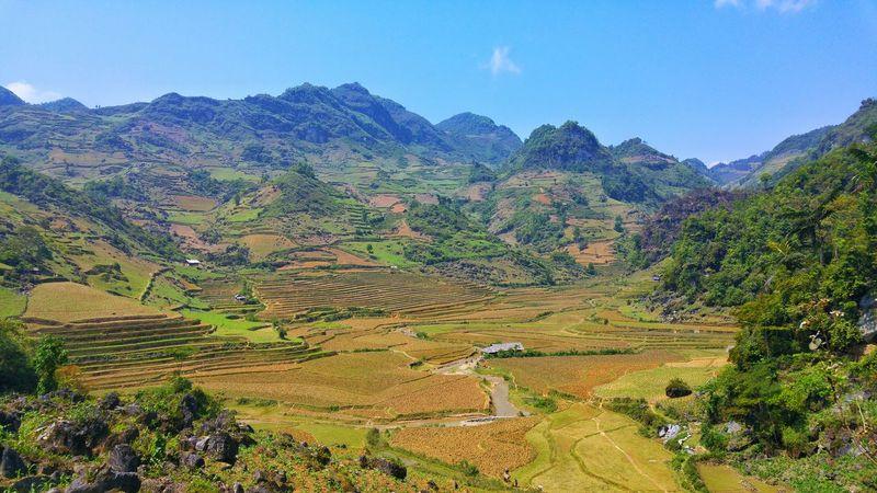 Bah ha valley in Vietnam Landscape Paysage Natur Nature Vietnam Color Lighting Picoftheday Mountains Montagne