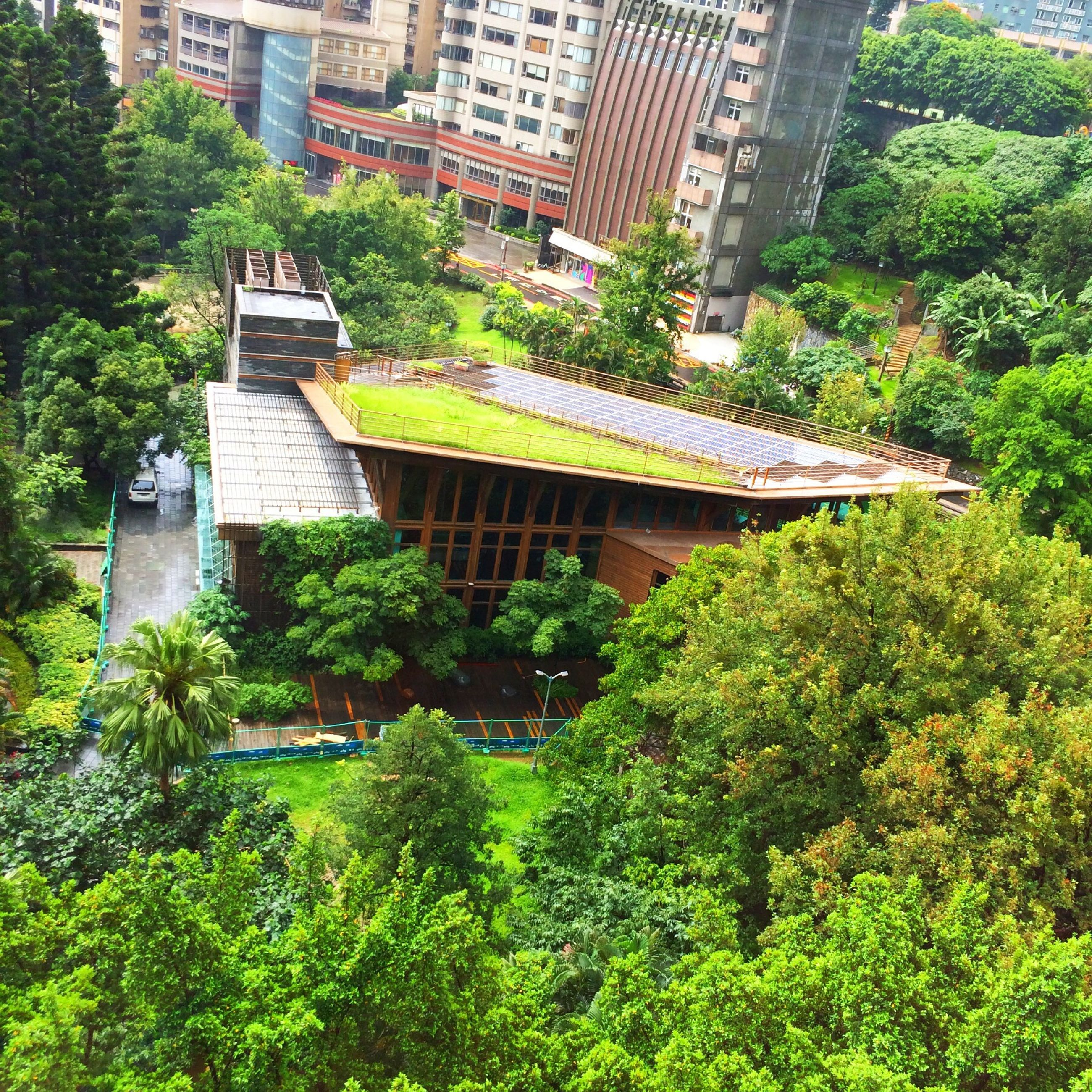 architecture, built structure, building exterior, tree, city, growth, green color, high angle view, plant, modern, day, lush foliage, skyscraper, outdoors, residential building, building, office building, city life, no people, travel destinations