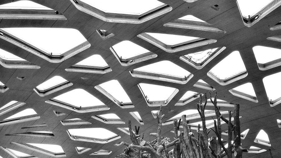 Low Angle View Of Skylights