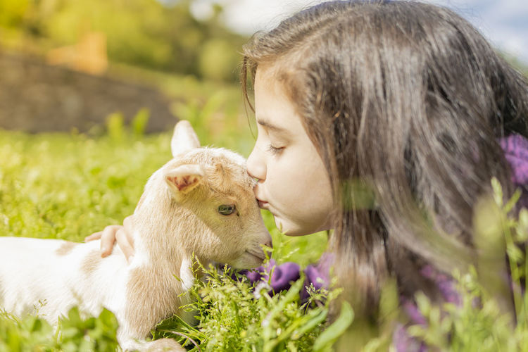 Close-up of cute girl kissing kid goat on grassy land
