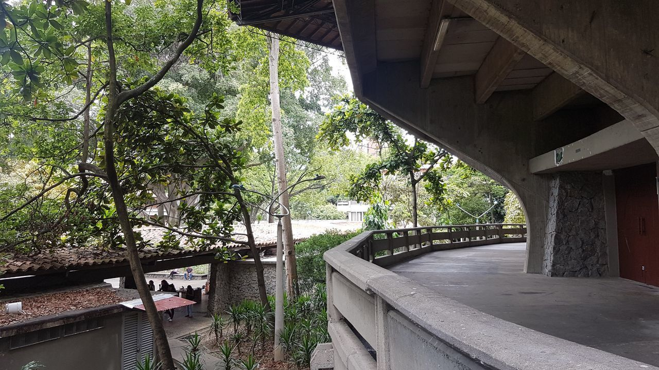 ARCH BRIDGE OVER RIVER AMIDST TREES AND BUILDINGS