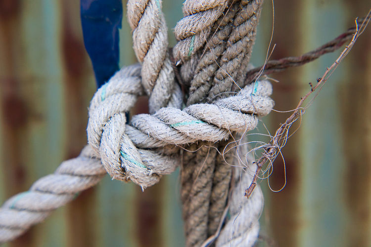 Close-up of rope tied to chainlink fence