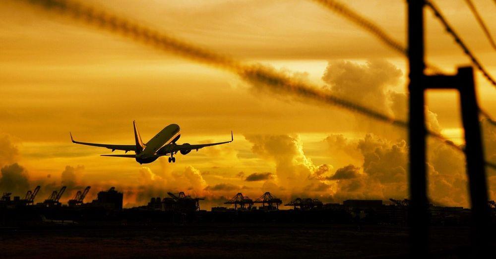 飛機日記 Airplane