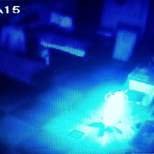 синийсвет призраки онпридетзатобой бррр