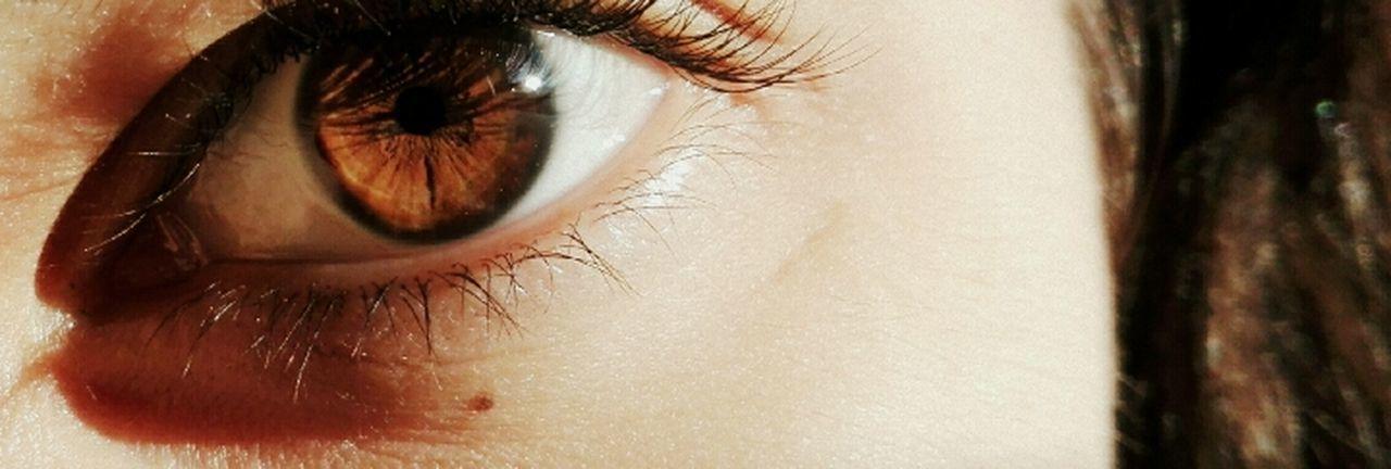 Amazing Broun Dog Chocolate Enjoying Life Eyeball Friends Green Color Human Eye Iris - Eye Life Lifestyles Love Love This  One Person One Woman Only People Real People Sensory Perception Smilin Evereytime Smiling