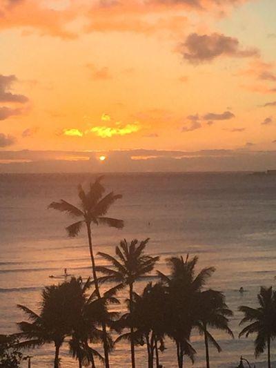 Setting Sun Over Ocean Orange Sky Sunset Hawaiian Sunset Oahu Sunset Island Of Oahu, Hawaii Pacific Ocean View Pacific Sunset Pacific Ocean Sky No Edit/no Filter Silhouette Water Sun No People An Eye For Travel