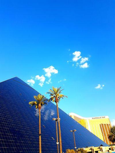 Sky Blue No