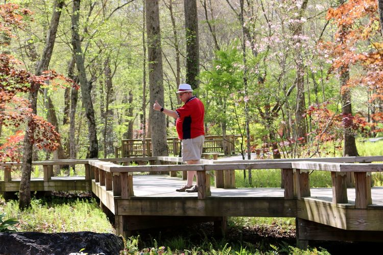Mature Man Standing On Footbridge At Forest