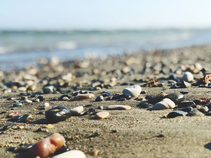 Formation Water Backgrounds Full Summer Sand Rocks Small Beach Sea Beach Sea Water Land Sand Nature Day Beauty In Nature Horizon Over Water No People Sunlight Horizon Animal Shell Shell Close-up Focus On Foreground Tranquility Sky Outdoors Surface Level