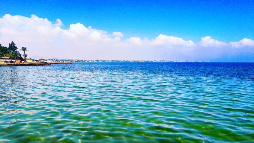 Sea and sky and trees Egypt Ismailia First Eyeem Photo