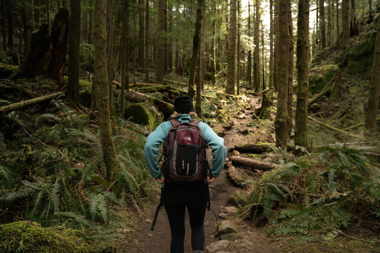 Adventure Backpack Beauty In Nature Day Discovery Exploration Forest Hiker Hiking Landscape Leisure Activity Men Mountain Nature One Man Only One Person Outdoors Real People Rear View Scenics Standing Travel Tree Vacations Walking