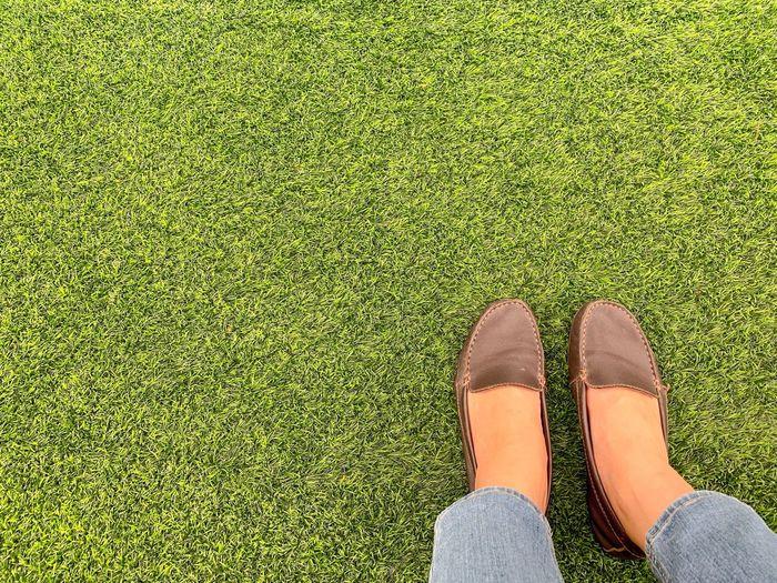 Grass Area Feet