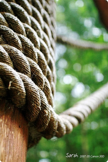 Life is like a rope but ropes raise me up, it binds me Rope Ropes Korea Gwacheon