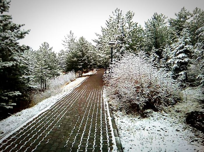 Snow Nature Snowing Day Forest Sky No People Outdoors Tree Rail Transportation Railroad Track Water People Blue Nature Sand Wave My Photography Scenics Beauty In Nature Pebble First Eyeem Photo EyeEm Best Shots EyeEm Gallery EyeEmBestEdits