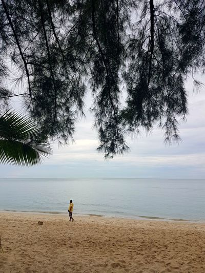 Penang Beach Penang Island Nature One Person Walkway Lonely Moments