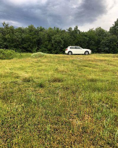 Cars on field against sky