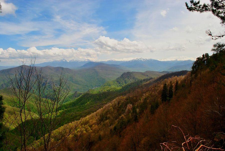 горыкавказа Адыгея
