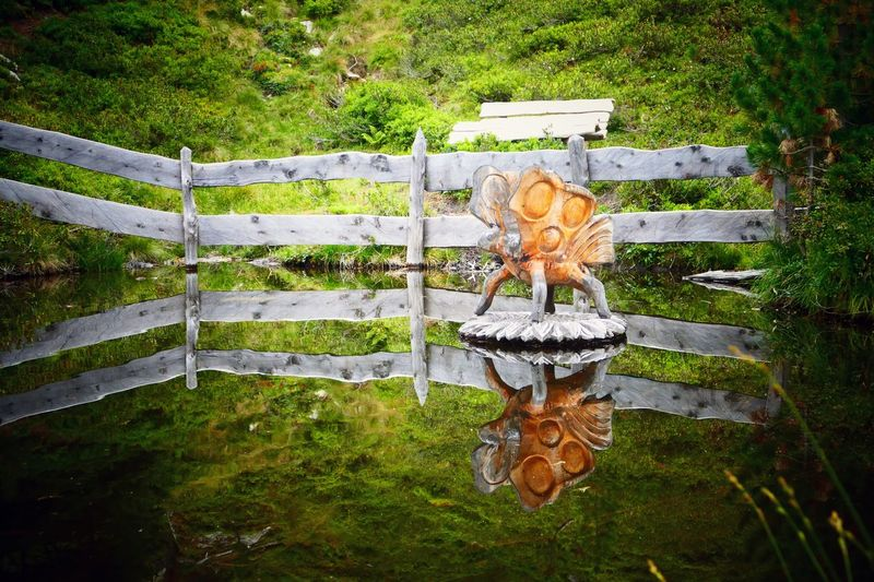 Wooden Butterfly Butterfly Wooden Animal Bad Gastein Vlinder Reflection Reflections In The Water Nature Artwork No People Plant Day Art And Craft Creativity Nature Representation Outdoors Design