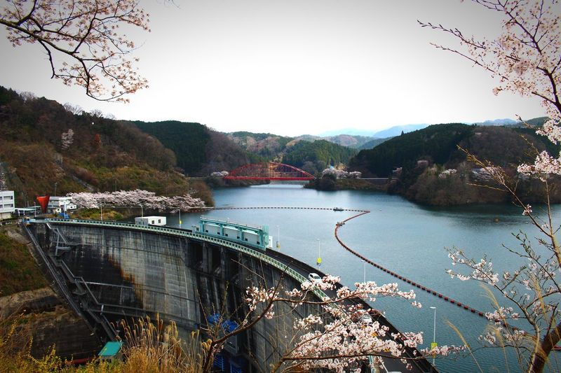 ダム 名張 青蓮寺湖 Water Tree Plant Nature Sky Day Clear Sky Beauty In Nature Outdoors No People Mountain Lake