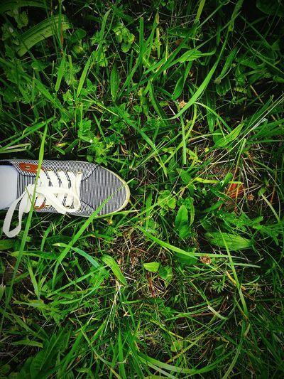 Feel The Journey Grass Walking Nature Green Shoe Wheretogo