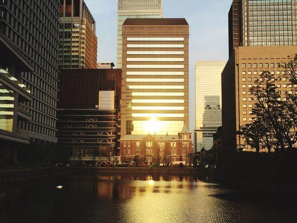 Streetphotography Urbanphotography Architecture Marunouchi Ootemachi Sunbeam ビルに反射する夕陽