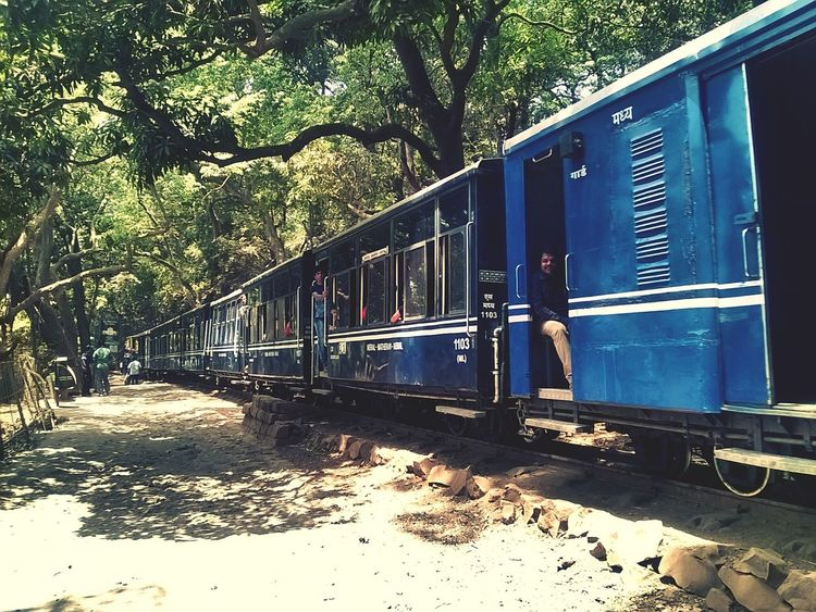 Vanishing Point Train In Matheran