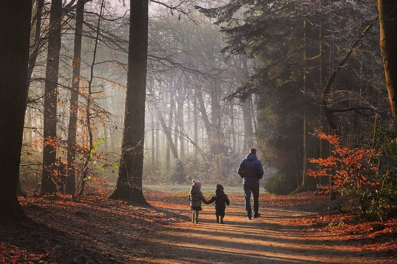 Man and children in forest