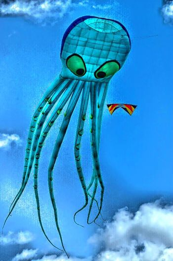 Cerf Volant Kite Octopus in the Sky Check This Out EyeEm Best Shots EyeEm Funny Animals Colours