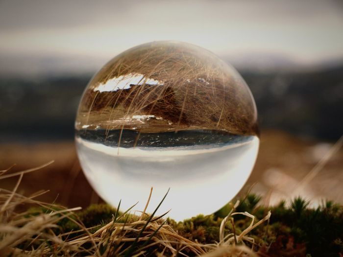 On the hills above Bala Lake Bala Lake Bala Wales Lake Hill Field Pasture Reflection Winter Walking Around Taking Photos Valley Selective Focus Cloud - Sky Refraction Wide Open Spaces Water Planet Earth Astronomy Crystal Ball Close-up Sky Grass Sphere Shore Globe Calm Horizon Over Water The Great Outdoors - 2018 EyeEm Awards