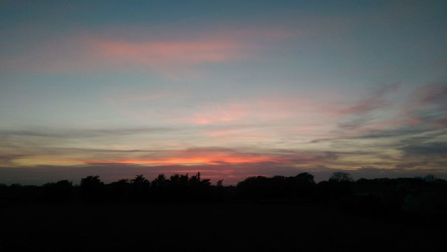 Its a happy sunset after all.. Sunset Beauty In Nature Tranquility Cloud - Sky Multi Colored Dusk Landscape Nature Scenics Tree Day Sky Outdoors Silhouette Dramatic Sky Tranquil Scene No People Astronomy