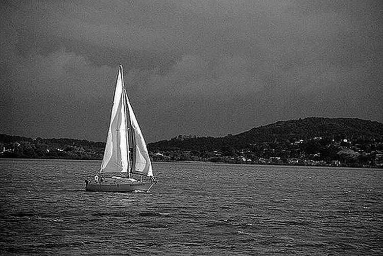 Velejando Lake Lago Veleiro Velejando B&w Photography Preto E Branco Paisagensbrasil Landscapes Landscape_photography Sea Water Day Yachting Outdoors Sailing Ship