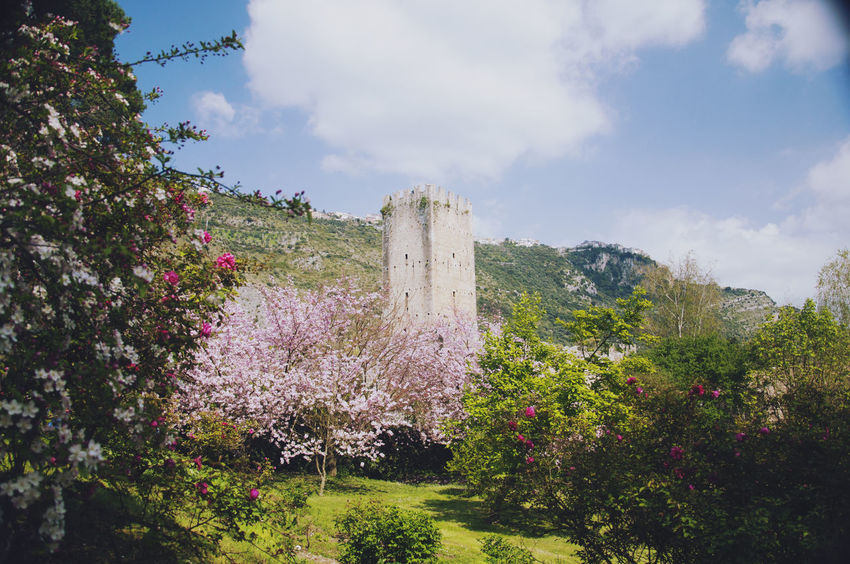 Garden of Ninfa , the Oasis near Sermoneta, italy. a wonderful place in springtime.. Eden Flowers Garden Italy Nature Nature_collection Out Outdoors Sermoneta Sky Springtime Wonderland
