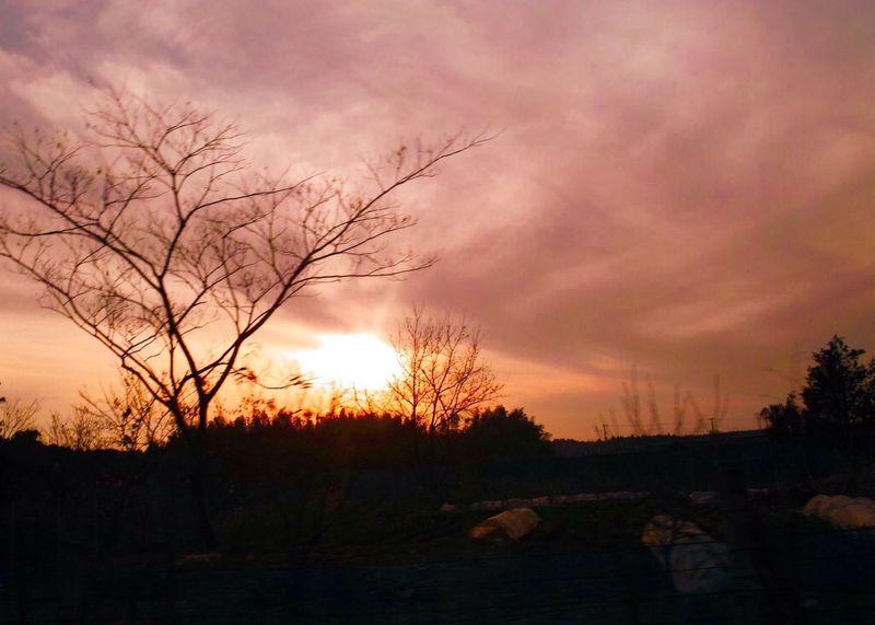 おつかれさま。 Sunset Afterglow Twilight おつかれさま 夕暮れ時 SigmaDP1X
