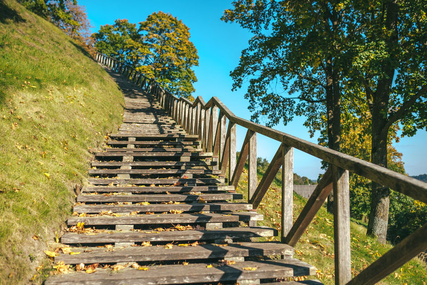 Stairs Day Growth Hand Rail In A Row Low Angle View Mountain Nature No People Outdoors Railing Sky Staircase Stairs Steps Steps And Staircases To The Top Tree Wood Path