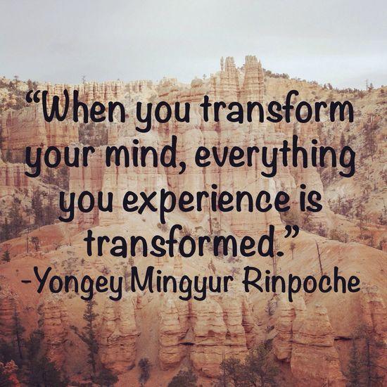 Quote Quotes Transformation