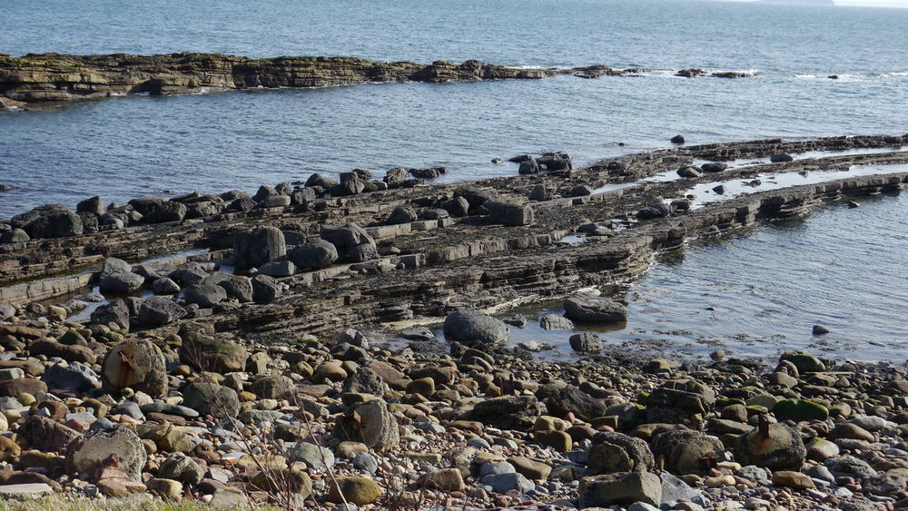 Scotland Anstruther Beach Beauty In Nature No People Outdoors Pebble Rock - Object Sea Shore Tide Water