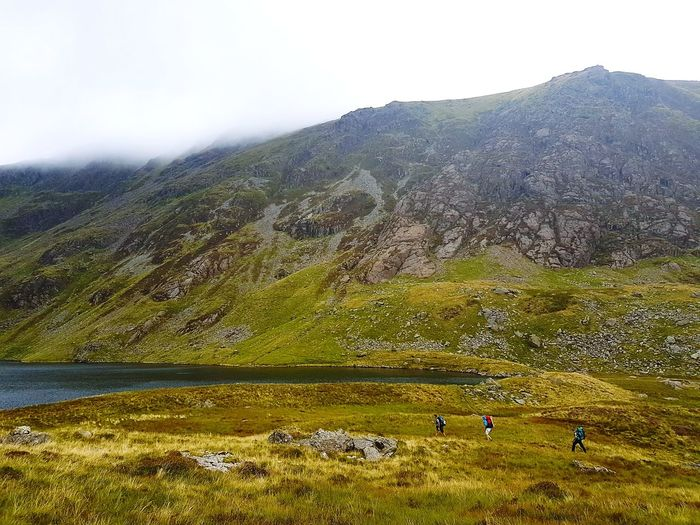 Landscape Fog Outdoors Nature Hiking Camping Mountain Cloud - Sky Wales Hikers Harsh Landscape Scenics Rural Scene Day Animal Themes Grass Sky Llyn Cau Beauty In Nature
